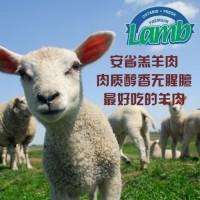羊肉 (14)