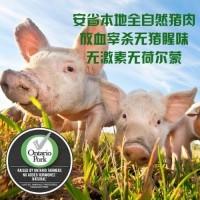 猪肉 (41)