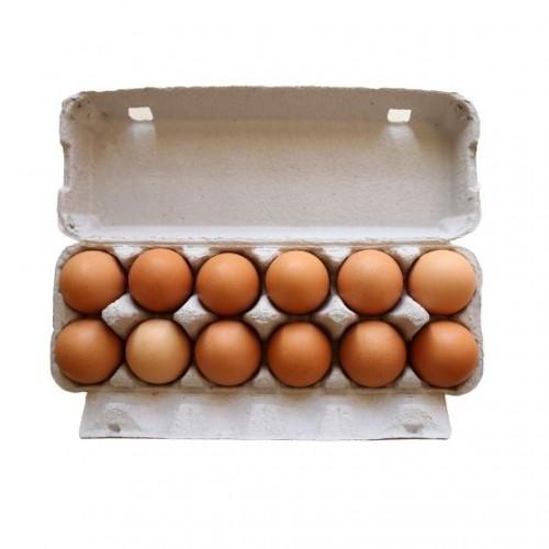 瀑布农场走地鸡鸡蛋(每打12个)