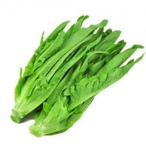 A菜 油麦菜 约2磅/份