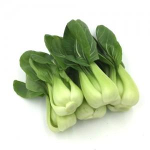上海白菜苗 约2磅/份