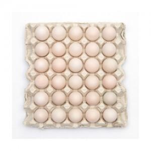 Small Duck Eggs(雏鸭蛋,小鸭蛋)